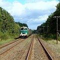 SU45-147 w dniu 19.09.2010 - Biernatowo - Wieleń Płn #kolej #SU45 #Piła #Ujście #pociąg