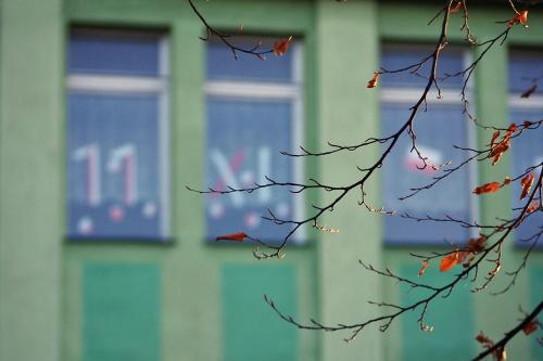 #okna #gałązki #jesień