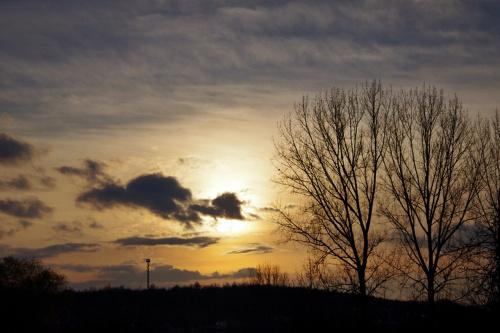 #niebo #drzewa #słońce #natura #jesień