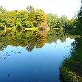 Dębina, staw przy leśniczówce. #jesień #stawy