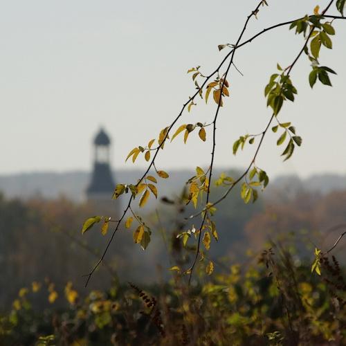 #jesień #Lubsko