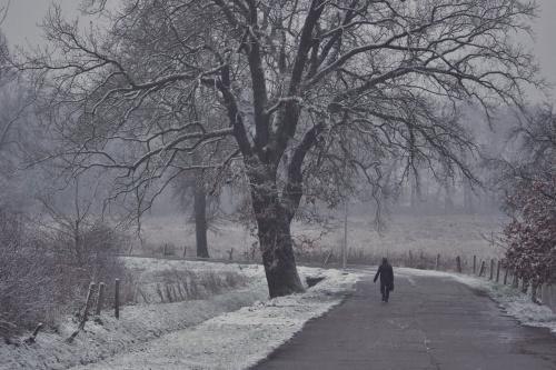 #listopad #śnieg #droga