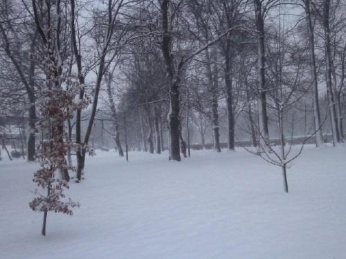 nadeszła zima