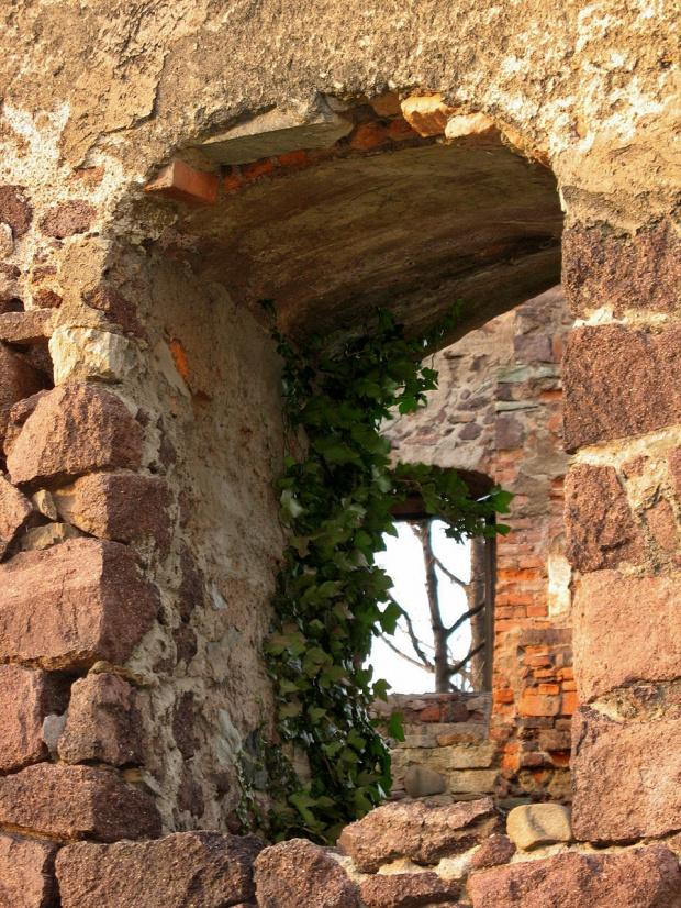 tu o zamku więcej: http://www.fotosik.pl/pokaz_obrazek/f483076d3f439f69.html #Świny #zamek #ruiny