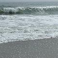 Kwietniowy spacer plaża #ocean #fale #plaza #muszle