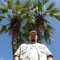 Jak w ciepłych krajach :] #palmy #palma #błękit