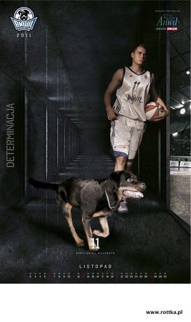 #rottka #anwil #rottweilery #rottweiler #koszykówka #kosz #włocławek