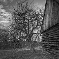 Drzewo i drewno... #wieś #architektura #HDR #arietiss