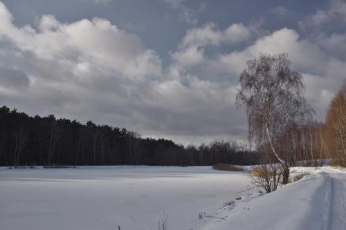#zima #zalew #brzoza #niebo #śnieg #styczeń