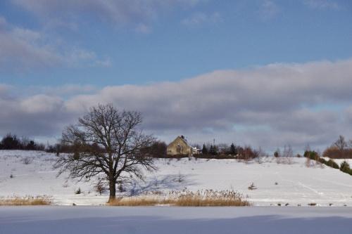 #zima #śnieg #zalew #niebo #styczeń #drzewa