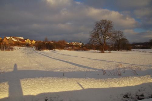 przed odwilżą #zima #śnieg