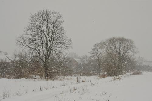 pada(ł) śnieg #zima #śnieg